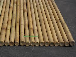 best bamboo cane pole stake all decor ideas for fences custom