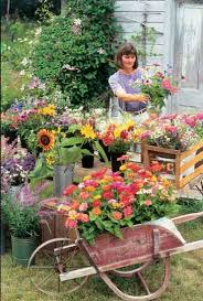 grow flowers for profit organic gardening mother earth news