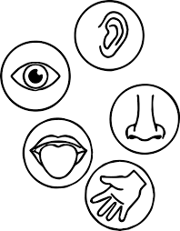 senses coloring page wecoloringpage