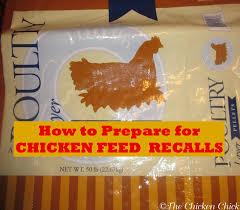 the chicken preparing for chicken feed recalls safety first