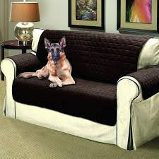 Furniture Protectors For Sofas by Loveseat Pet Cover For Loveseat Category Archives Sofa Pet Cover