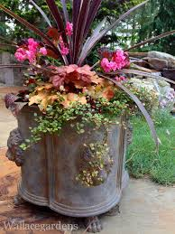 Outdoor Planter Ideas by Thriller Filler Spiller Photo By Nancy Wallace Container