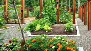 great small vegetable garden design ideas with fertilizer to grow