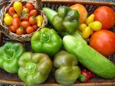Fall Garden Plants Texas - guide to fall vegetable planting in north texas gardening