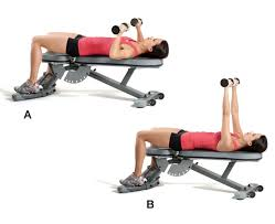 total body strength circuit workout gym equipment required