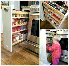 Narrow Spice Cabinet Come Look Inside Our Kitchen Cabinets Andrea Dekker
