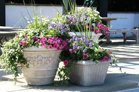 Garden Pots Ideas Outdoor Flower Pots Ideas Outdoor Designs