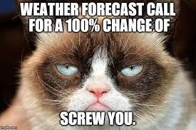 Make Your Own Grumpy Cat Meme - grumpy cat not amused meme generator imgflip