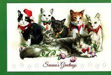 pumpernickel press cards cat christmas cards ebay