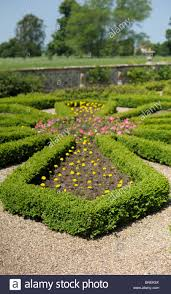 box hedge in an country house formal garden with gravel