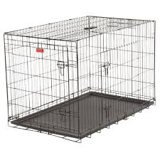 crate training lucky dog 48 in long training crate with 2 door zw 11548 the