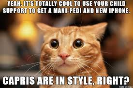 Sarcastic Cat Meme - shocked sarcastic cat meme on imgur