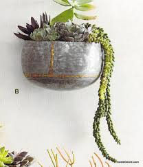 Wall Mounted Planters by Braza Indoor Outdoor Wall Planters
