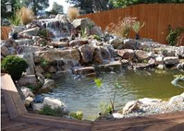 Pictures Of Backyard Waterfalls by Riverside Ponds Backyard Waterfalls Backyard Ponds