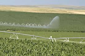 irrigated corn nebraska farms for sale farm land irrigated sioux county corn water