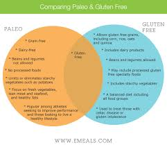 paleo vs gluten free gluten free bodies and free