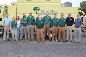 Winchester Va Zip Code Map by Bartlett Tree Experts Tree Service And Shrub Care In Winchester Va