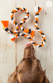 halloween dog toys how to create a halloween boo kit a dog gift basket for halloween