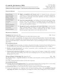 Ceo Resume Example Cfo Resume Sample Resume Cv Cover Letter