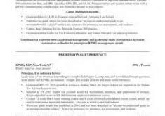 The Best Resumes Ever by Extremely Creative The Best Resume Ever 16 Best Resumes Ever Seen
