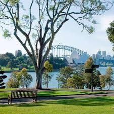 Botanic Garden Sydney Sydney Royal Botanic Garden Place To Relax Your Mind