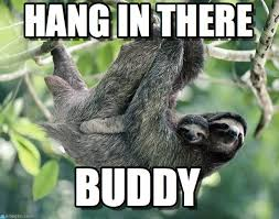 Hang In There Meme - hang in there sloth buddies meme on memegen