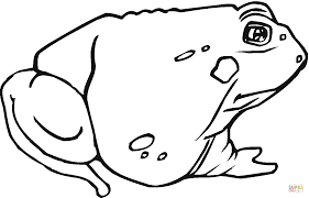 toad 12 coloring page free printable coloring pages