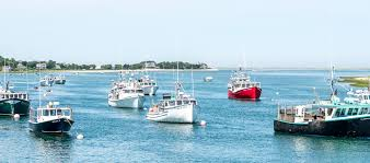 5 tempting cape cod seafood shacks u2014 endless vacation magazine