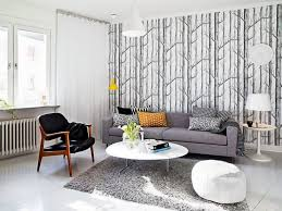 sofas marvelous grey couch living room ideas home decor color