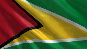 Gayana Flag República Cooperativa De Guyana Fotorecurso