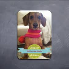 christmas cards for dogs christmas lights card and decore
