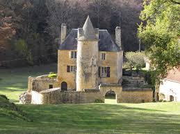 authentic chateau with stone fireplace and 11 hectares of land for