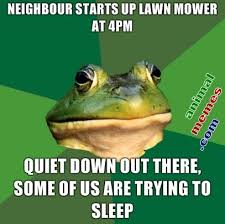 Lawn Mower Meme - bachelor frog neighbour starts up lawn mower at 4pm animal memes
