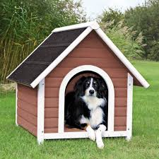Dog Home Decor by What You Get When Buying A Cheap Dog House Mybktouch Com