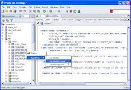 resume for oracle database developer