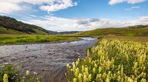 rivers images Western rivers conservancy river conservation for fish wildlife jpg
