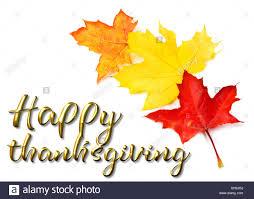 thanksgiving greeting stock photos thanksgiving greeting stock