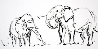 african diaries sketches u0026 observations by david g derrick jr