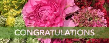 congratulations flowers congratulations flowers ecostems toronto ontario local eco