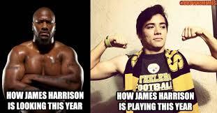 Funny Pittsburgh Steelers Memes - brownsmemes pittsburgh week had a happy ending