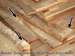 Powder Post Beetles In Hardwood Floors - why heat treatment is needed welcome to bhagwatleela wood craft