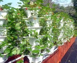 Verticle Gardening by Vertical Garden Inhabitat Green Design Innovation