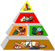 the food pyramid what is it and where are you on the healthy diet