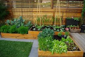 stunning garden designs for small spaces 1 of 17 garden wall
