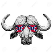 Flag Confederate States Of America Buffalo Bull Ox Wearing Glasses With National Flag Of The