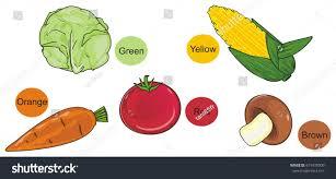 Orange Colors Names Vegetables Rounds Colors Name Stock Illustration 619478000
