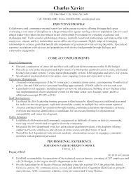 Senior Finance Executive Resume Professional Senior Law Enforcement Executive Templates To