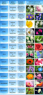 flower of the month birth flowers for each month pictures beautiful birth month