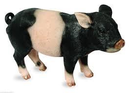 large black pink striped piglet garden ornament pig tc183