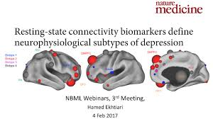 Human Brain Mapping Human Brain Mapping Webinars Farsi Third Session Biotyping For